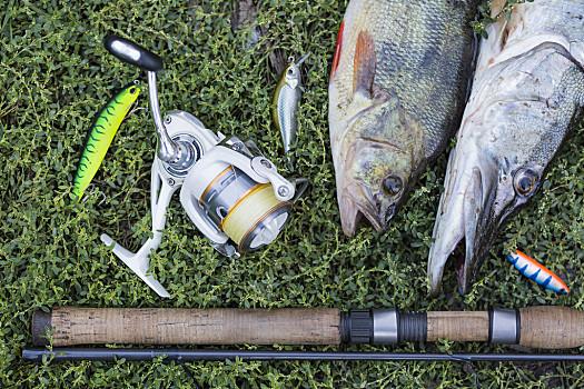 路亚鳡鱼的标点选择和技巧运用