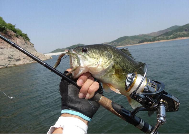 黑坑路亚鲈鱼钓组 黑坑路亚鲈鱼用什么饵最好